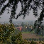Italian Vista Through The Trees